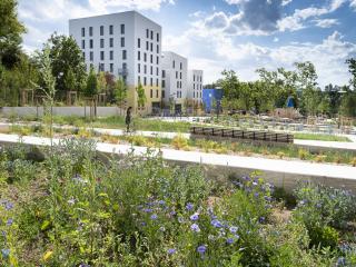 Vue du jardin des Belvédères, à Lyon La Duchère. C'est un nouveau parc au cœur du projet de renouvellement urbain.